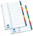 BANTEX 6259 A4 (Jan-Dec) 紙質顏色裱膠分類頁