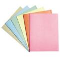 A4/F4 紙質文件夾100個裝